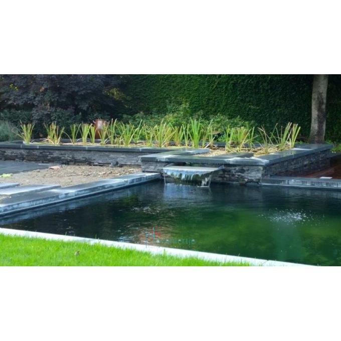 zwemvijver hoveniertje wellen