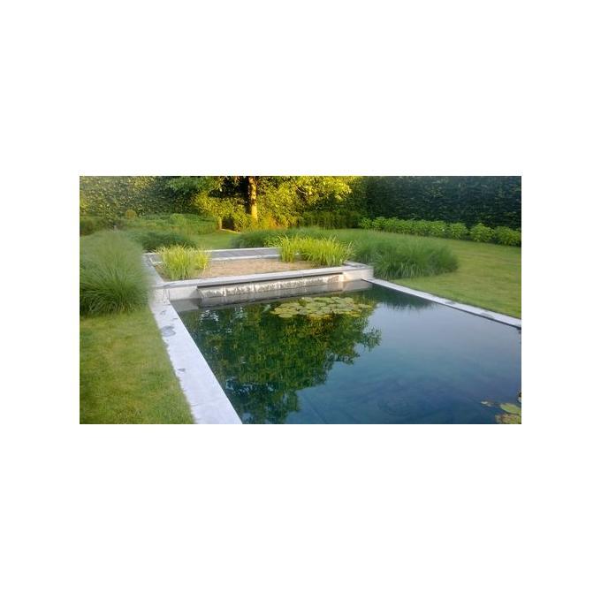 moeras met zwemvijver